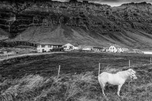 Iceland-photos-IMG_5259
