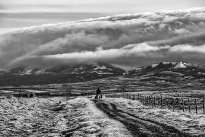 Iceland-photos-00035243