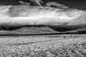 Iceland-photos-00035359-2